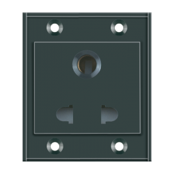 Combined Switch & Socket (Plate) (2)